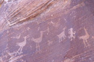 Petroglyphs at Petrified Forest
